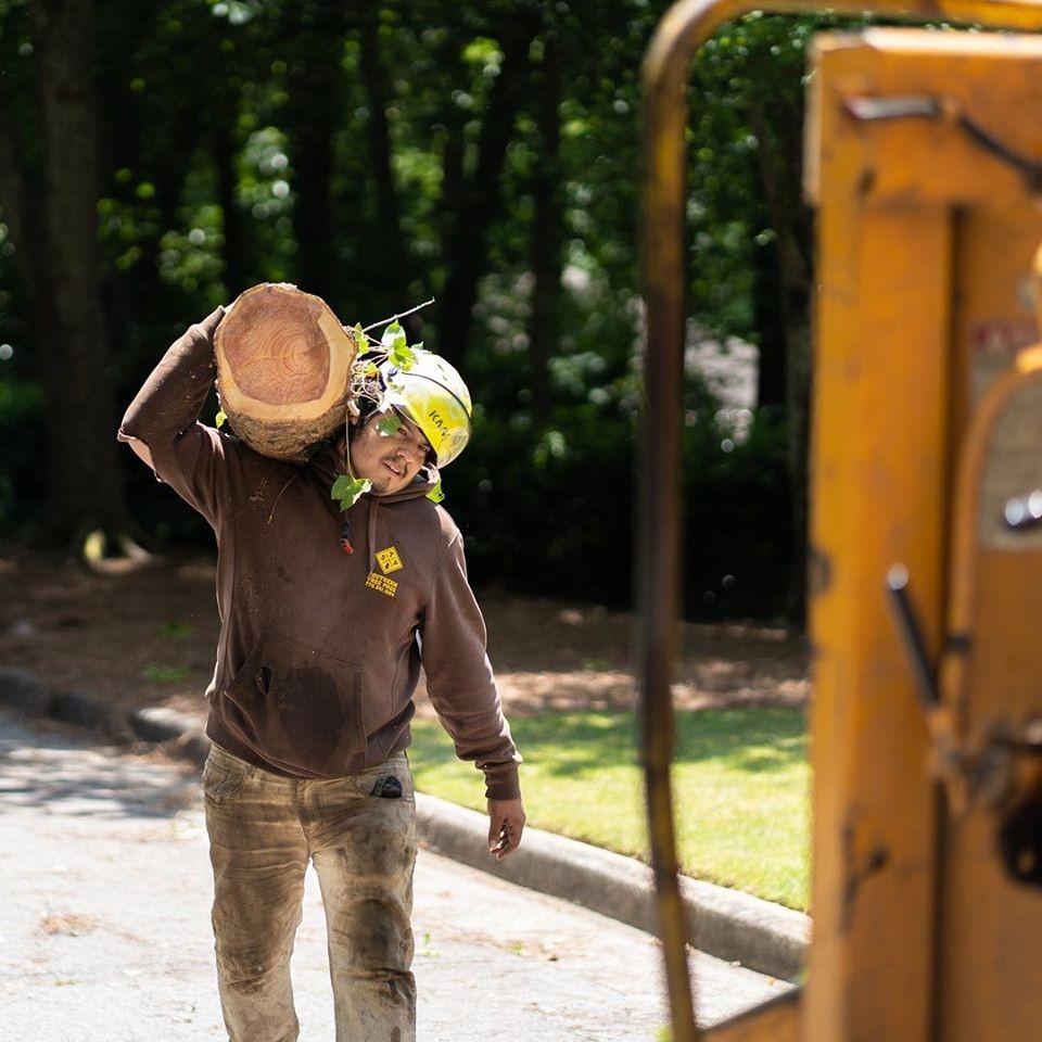 Man hauling wood