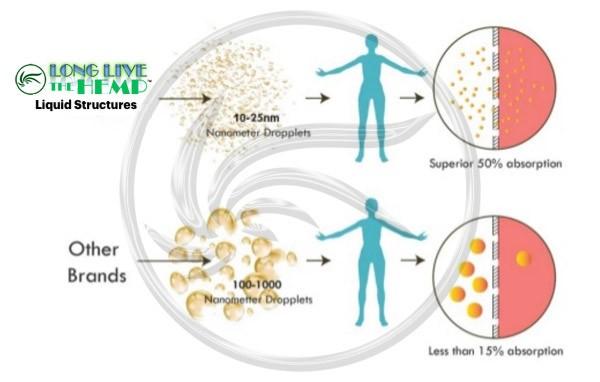 llth-water-soluble-vs-liposomes.jpg