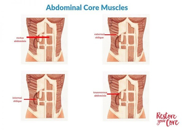 rs.abdominal-core-muscles.jpg