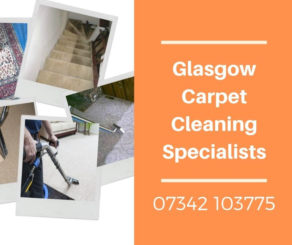 carpet cleaning Cathcart.jpg