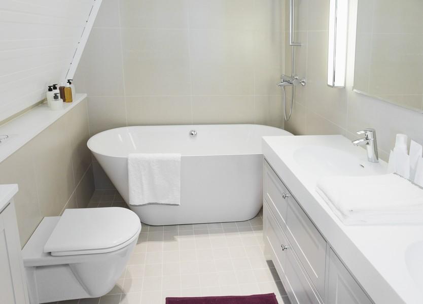 bathroom-remodeler.jpg